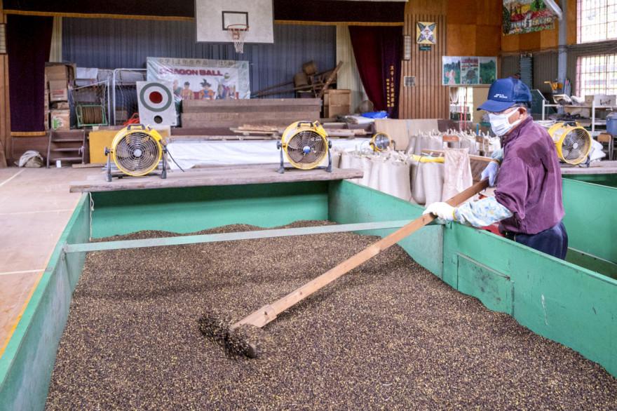 そばの実の乾燥作業を行う佐藤会長